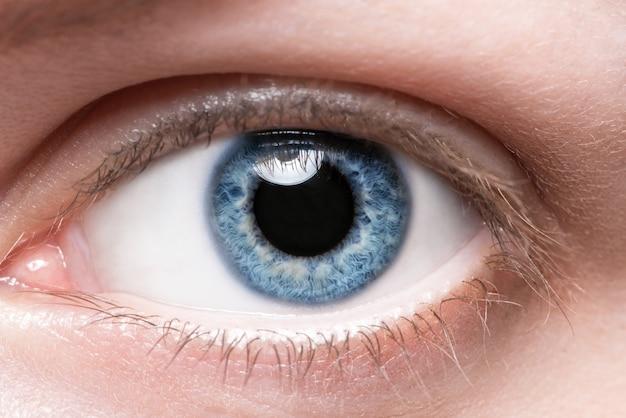 Sluit omhoog blauw oog