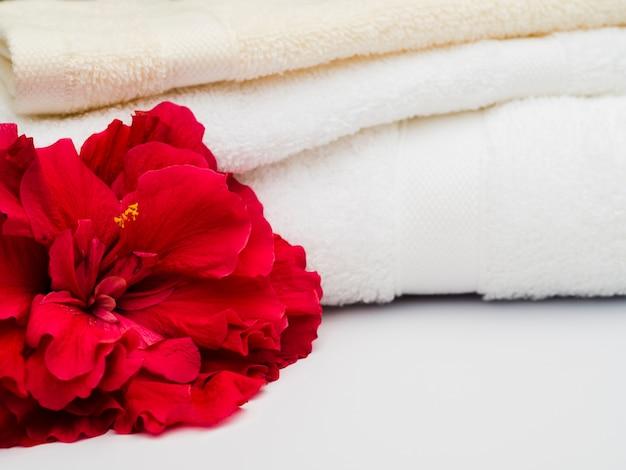 Sluit omhoog bloem naast handdoeken
