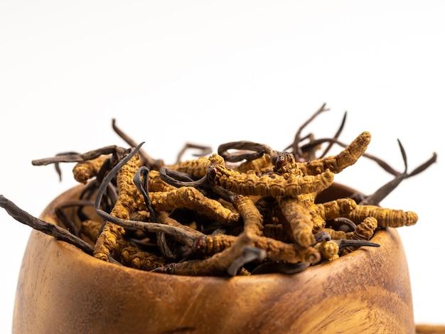 Sluit omhoog cordycep-sinensis of paddestoel cordyceps op houten kom