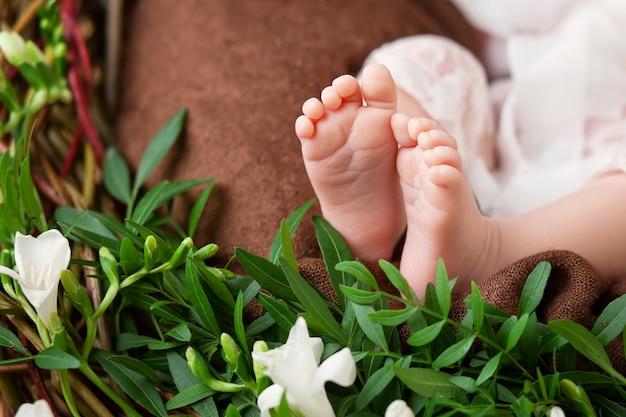 Sluit omhoog foto van pasgeboren babyvoeten op gebreide plaid en bloemen