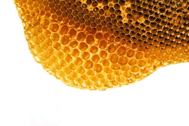 Sluit omhoog gele mooie honingraat met honing