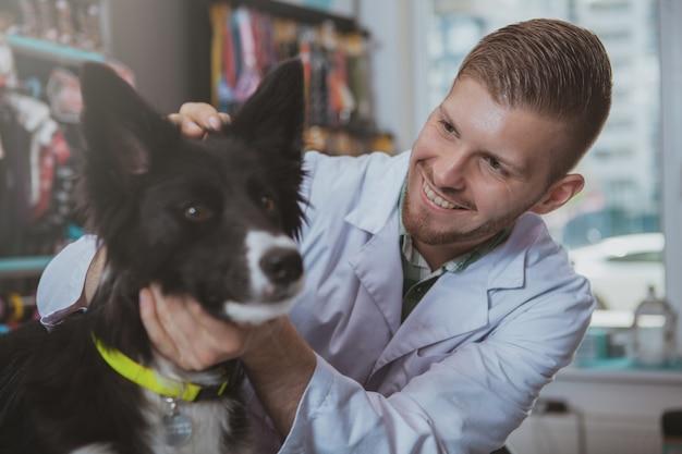 Sluit omhoog geschoten van aanbiddelijke zwarte hond die ooronderzoek hebben door knappe mannelijke dierenartsarts