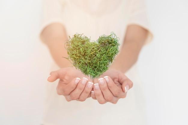 Sluit omhoog hart dat van greenary wordt gemaakt