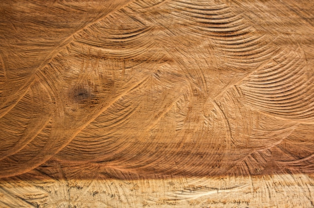 Sluit omhoog houten textuur van gesneden de aardachtergrond van de boomboomstam.