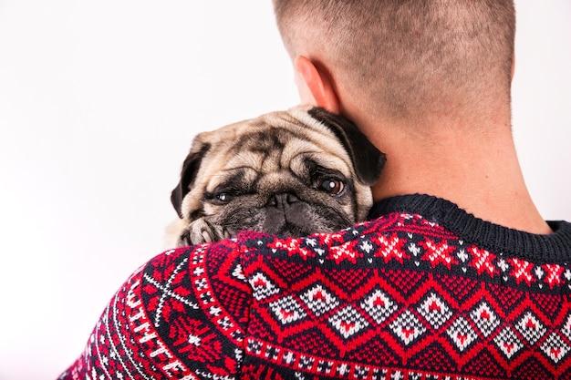 Sluit omhoog leuke pug die door eigenaar wordt gehouden
