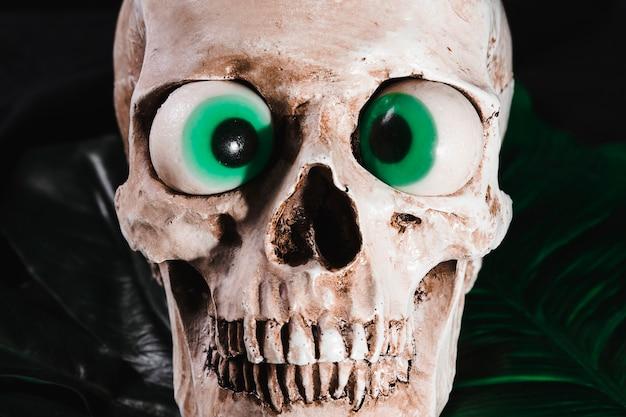 Sluit omhoog mening van schedel met buitensporige ogen