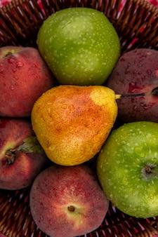 Sluit omhoog mening van verse en kleurrijke vruchten op emmer