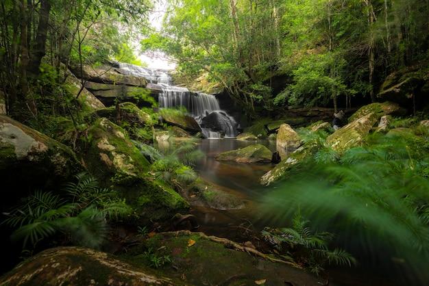 Sluit omhoog meningswaterval in diep bos bij nationaal park, de scène van de watervalrivier.