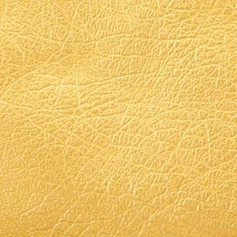 Sluit omhoog ontsproten van de gouden achtergrond van de leertextuur