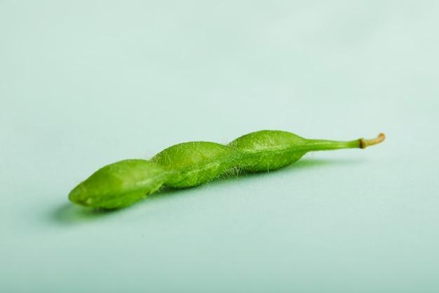 Sluit omhoog op edamame of geïsoleerde sojabonen