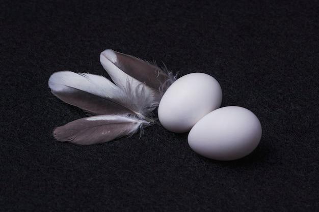 Sluit omhoog op geïsoleerde eieren en veren