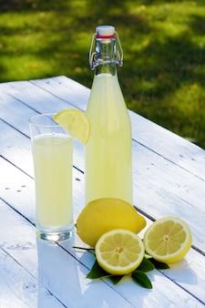 Sluit omhoog op limonade in hoge fles en citroenen