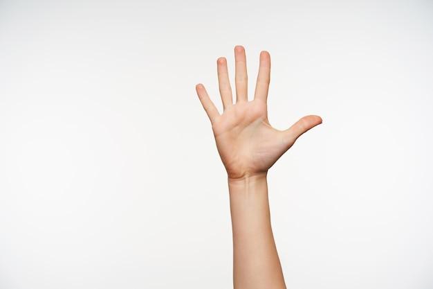 Sluit omhoog op opgeheven vrouwenhand die palm toont en alle vingers afzonderlijk houdt