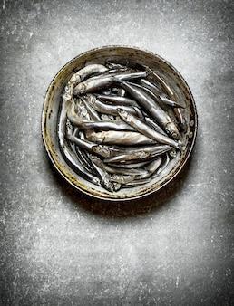 Sluit omhoog op verse sprot in de oude pan