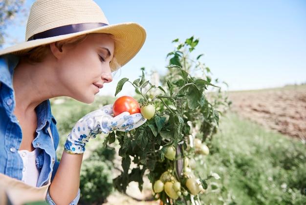 Sluit omhoog op vrouw die voor haar tuin zorgt