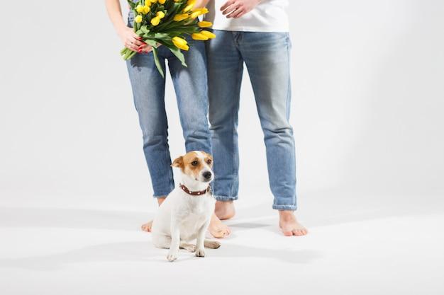 Sluit omhoog portret van hond met gele bloemen met mooi erachter paar.