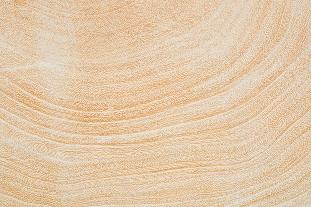 Sluit omhoog textuur van de boomstam van de boomomtrek na wordt gesneden.