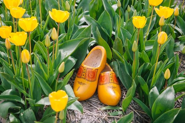 Sluit omhoog typische nederlandse nationale houten belemmeringen. de traditionele houten gele klompen schoenen van nederland bevinden zich op de grond tussen de gele gebieden van de tulpenbloem