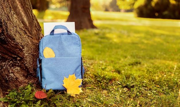 Sluit omhoog van blauwe schooltas in openlucht