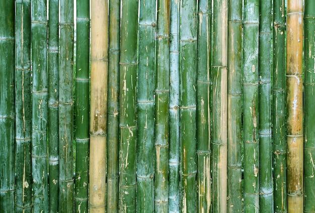 Sluit omhoog van de groene achtergrond van de de muurtextuur van de bamboeomheining.