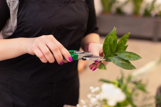 Sluit omhoog van de handen van de bloemistvrouw makend boeket en bijsnijdende stammen door te snoeien bij bloemwinkel