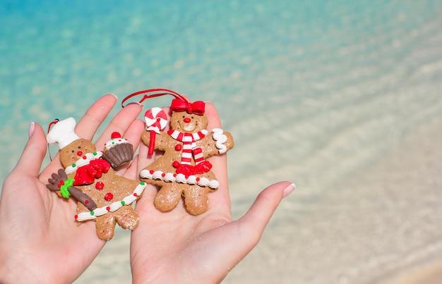 Sluit omhoog van de koekjes van de kerstmispeperkoek in handen