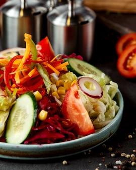 Sluit omhoog van de plantaardige tomaat van het de komkommergroenten van de saladesla graan en raddish