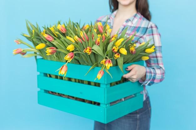 Sluit omhoog van de vrouwelijke doos van de tuinmanholding met tulpen op blauw