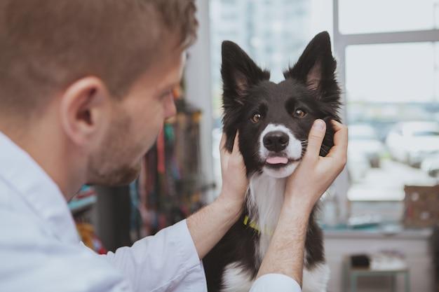 Sluit omhoog van een leuke gelukkige gezonde hond die zijn tong uitsteekt tijdens medisch onderzoek door dierenartsarts