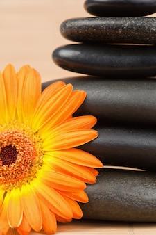 Sluit omhoog van een oranje zonnebloem en een zwarte stenenstapel