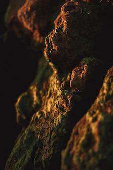 Sluit omhoog van een overzeese rots in het strand. gele en groene kleuren met veel zee-eikels en mos