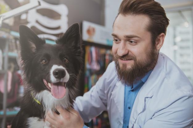 Sluit omhoog van een vrolijke dierenartsarts glimlachend bij leuke gelukkige gezonde hond na medische controle