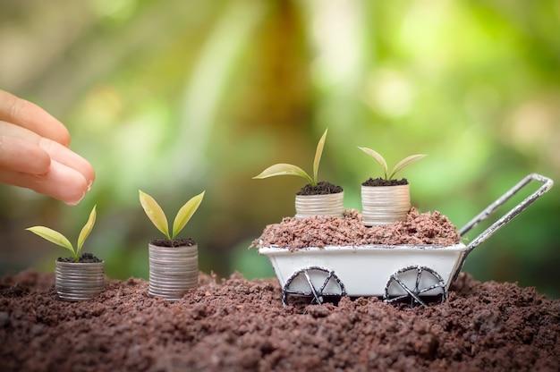Sluit omhoog van en hand die van de vrouw jonge planten voeden water geven groeit op stapel muntstukken voor handelsinvesteringen of bespaart concept