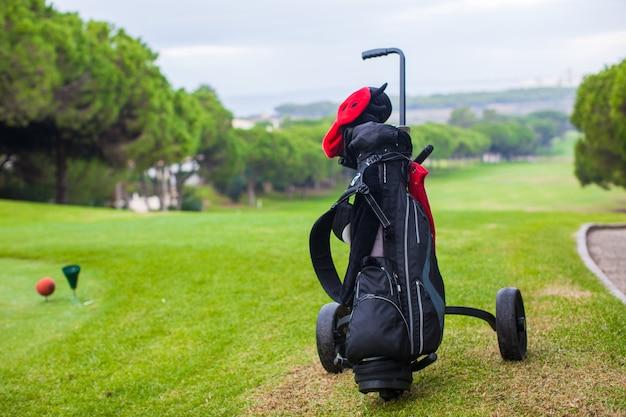 Sluit omhoog van golfzak op een groen perfect gebied