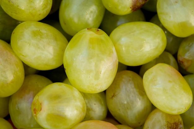Sluit omhoog van groene druiven