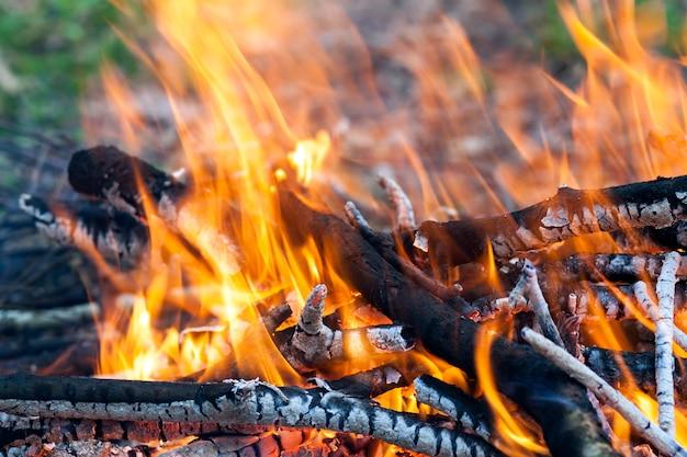 Sluit omhoog van hete brandende brand houten steenkool