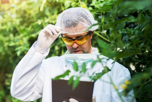 Sluit omhoog van jonge landbouwer die met gezichtsmasker de tablet in de serre bekijken.