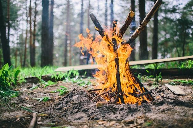 Sluit omhoog van opvlammende kampvuurkolen in binnen een bosopen plek