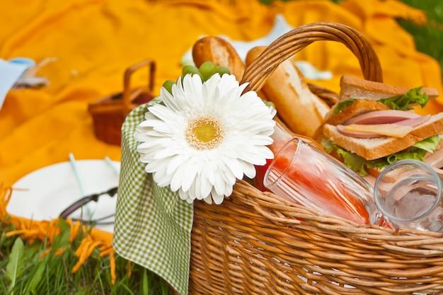 Sluit omhoog van picknickmand met voedsel, vruchten en bloem op de gele dekking op het groene gras