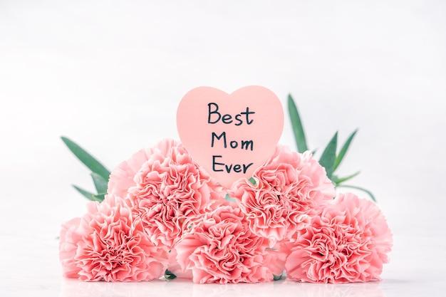 Sluit omhoog van roze anjer op witte achtergrond voor de bloem van de moederdag