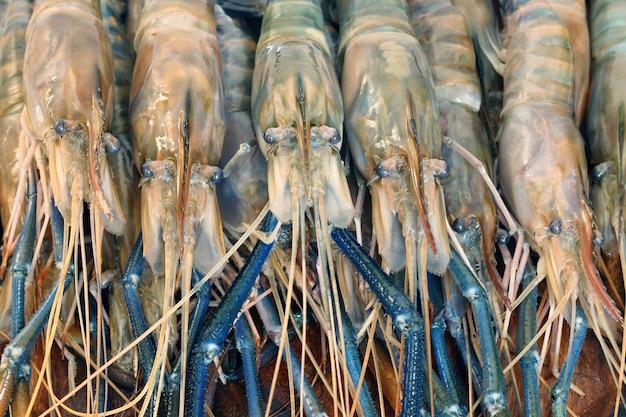 Sluit omhoog van ruwe garnalen, reuze zoetwatergarnaal in thailand.