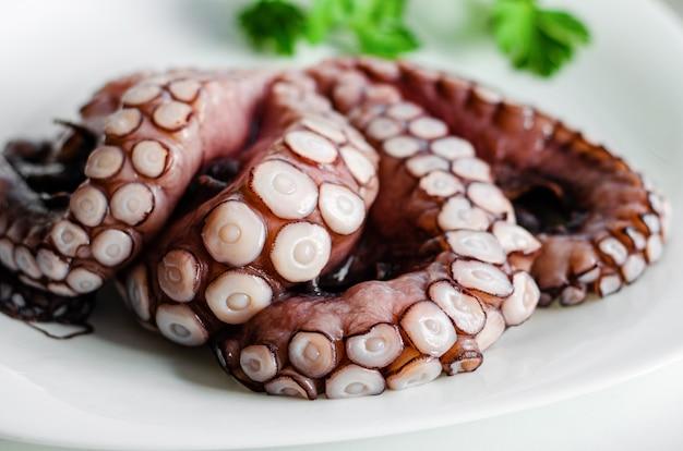 Sluit omhoog van ruwe octopustentakels op witte achtergrond