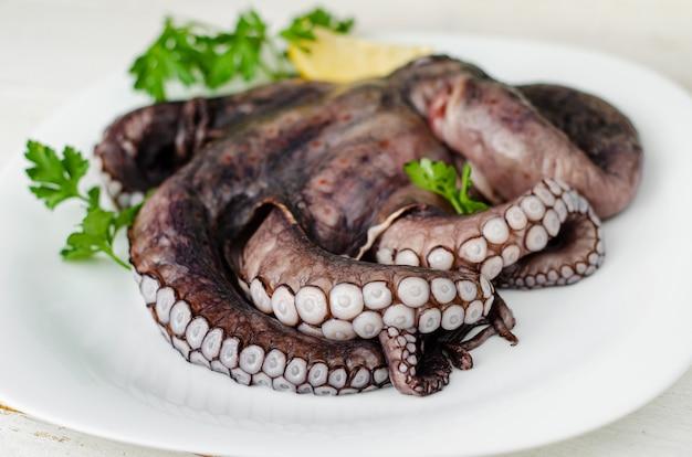 Sluit omhoog van ruwe octopustentakels op witte plaat