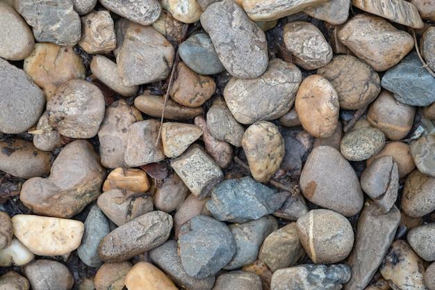 Sluit omhoog van steen en kiezelsteen op grond met droog blad voor achtergrond