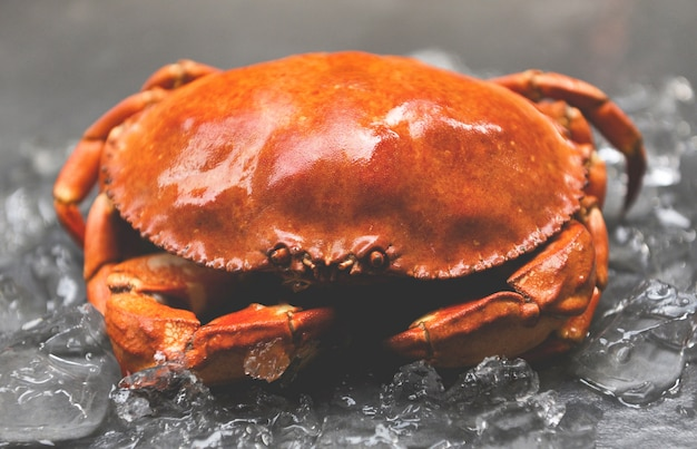 Sluit omhoog van steenkrab die in zeevruchtenrestaurant wordt gestoomd