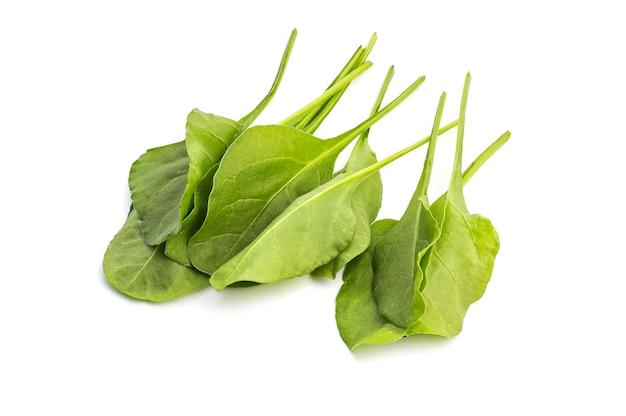 Sluit omhoog van verse groene geïsoleerde spinazie