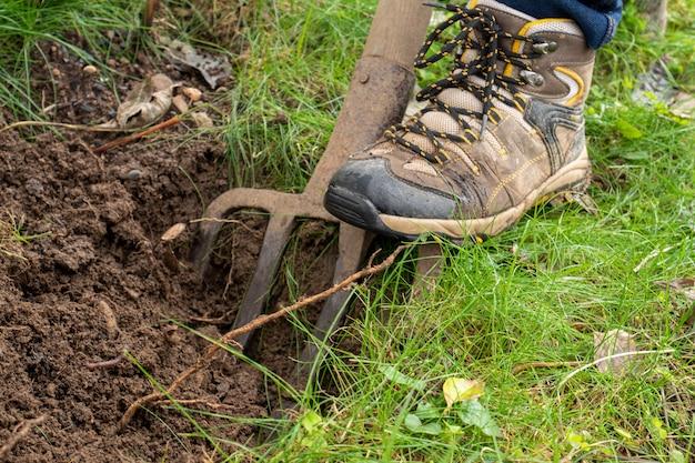 Sluit omhoog van vrouw het tuinieren met spade