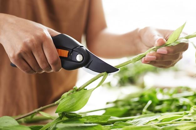 Sluit omhoog van vrouwelijke bloemisthanden snijdend bloemstelen.