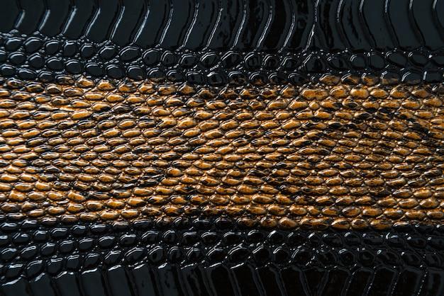 Sluit omhoog van zwarte slangtextuur