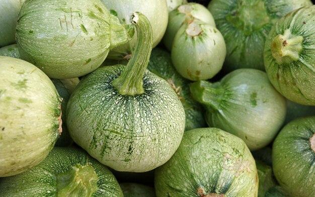 Sluit omhoog verse nieuwe groene baby ronde courgette op kleinhandelsvertoning van de boerenmarkt, de hoge mening van de hoek
